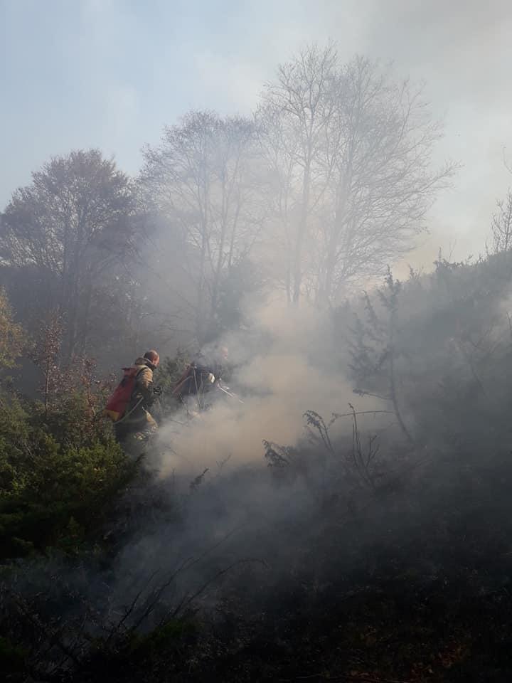 Photo of Шара и полошките ниви во месец ноември пеплосани од пиромани и палење на стрништа