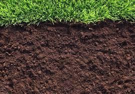 Photo of Основна обработка на почвата