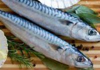 Како да одберете свежа риба