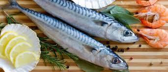 Photo of Како да одберете свежа риба