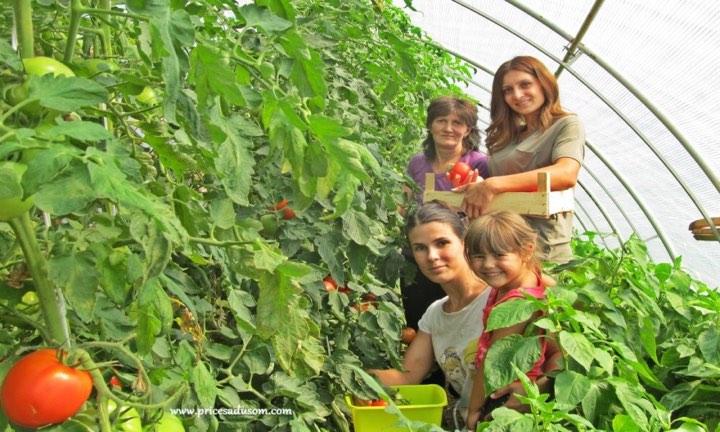 Photo of КОВИД-от дополнително ги оптовари руралните жени, трудот и натаму не им е вреднуван