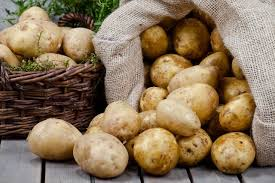 Photo of Правилно складирање и чување на компирот во текот на зимата