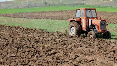 Photo of Се додека немаме поларни температури почвата не страда и покрај тоа што не е прекриена со снежна покривка