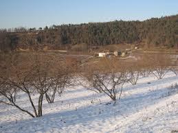 Photo of Агрономите советуваат да не се вршат агротехнички мерки кај овошките на ниски температури