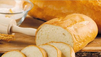 Photo of Земјата од која увезуваме жито, увезува леб