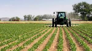 Photo of На 22 јануари истекува рокот за поднесување пријави за давање во закуп  земјоделско земјиште во државна сопственост