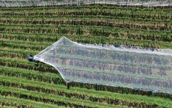 """Photo of Од денес до 14 април објава  од ИПАРД  2 за Мерка 1 """" Инвестиции во материјални средства на земјоделски стопанства"""""""