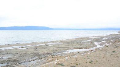 Photo of Експерти од Македонија, Грција и Албанија испитуваат зошто се намалува нивото на Преспанското Езеро