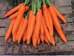 Photo of Сакате ли моркови? Еве што треба да знаете
