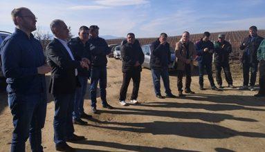 Photo of Лозарите ги добија субвенциите пред почеток на овогодинешната реколта