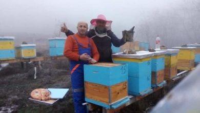 Photo of Се зголемува бројот на млади пчелари во Македонска Каменица