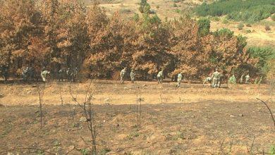 Photo of Почнаа подготовките за пошумување на опожарените површини во Кочанско