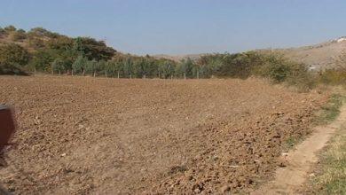 Photo of Иселувањето ги остави нивите во гостиварско без земјоделци