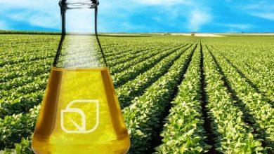 Photo of Биогоривата загадуваат за 60 проценти помалку од фосилните горива