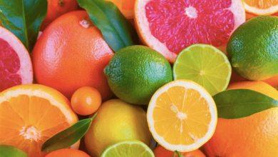 Photo of Владата донесе одлука за замрзнување на цените на лимоните, портокалите, мандарините ,грејпфрутот и клементините