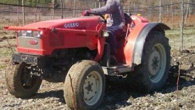Photo of Цела Преспа на бавчи