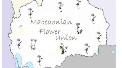 Photo of Цвеќарите бараат да бидат опфатени во владините мерки