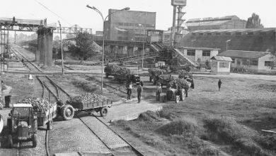 """Photo of Шеќерната приказната за битолската фабрика """"4-ти Ноември"""""""