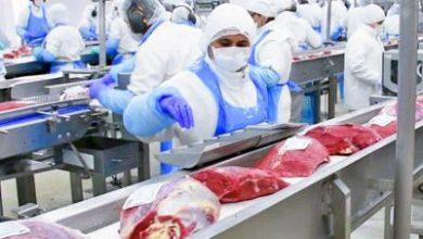 Photo of Препораки за бизнисите и операторите со храна во време на пандемија со Корона вирусот