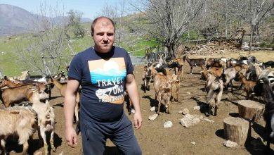 Photo of Борче Димитриоски-Заглавивме со јарињата, килограм јарешко колку едно чоколадо