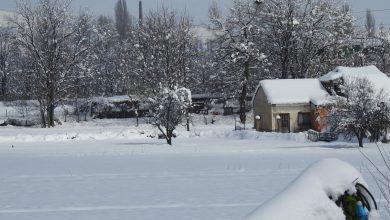 Photo of Снегот добредојден за есенските посеви, но штетен за коскестото овошје