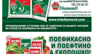 Photo of DIAMOND, со нивните производи, здравјето влегува преку коренот!