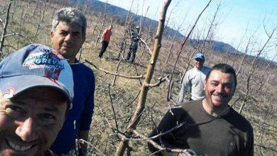 Photo of Последните количини од преспанските јаболка заминаа за Бугарија и Босна