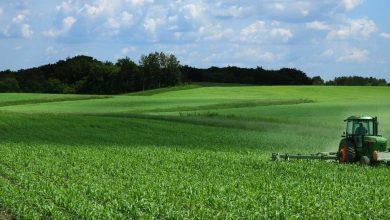 Photo of Од наш агол  Земјоделството-циклус кој не запира