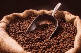 Photo of Залихите исцрпени: Поради короната се заканува недостиг на кафе?
