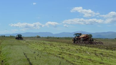 Photo of Аграрот во очај поради немањето визија