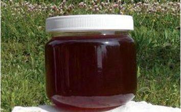Photo of Медун или мед медликовец