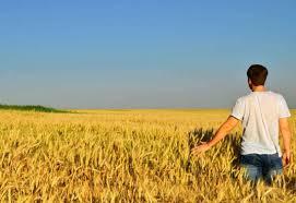 Photo of Премиерот Трудо ќе ги поттикнува младите од 15 до 30 години да станат земјоделци