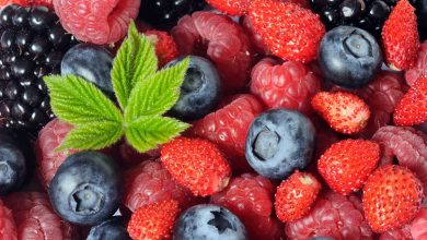 Photo of Србија остварила извоз на органски производи од речиси 30 милиони евра