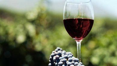Photo of Олеснети условите за регистрација на мали винарски визби