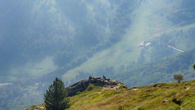 Photo of Пелистер-планина со величествена убавина
