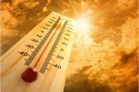 Photo of И денеска сончево и многу топло време