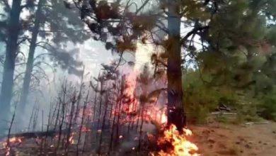 Photo of Аларм за опасност од пожари поради сушниот период и високите температури