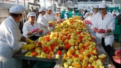 Photo of Преработувачката индустрија очекува помало производство, но и повеќе вработувања