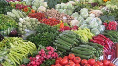 """Photo of ФАО и ОЕЦД: Поради пандемијата се очекува """"пазарен шок"""" кај земјоделските производи"""