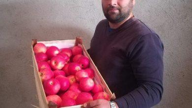Photo of Блерим Бесими-Успешен земјоделец мора да менаџира од производство до продажба