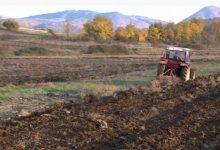 Photo of Дождовите во август го спасија земјоделството од суша