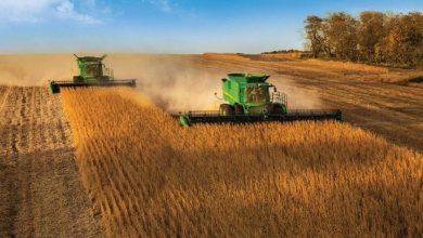 Photo of Пелагонија   Житото ожнеено, земјоделците незадоволни од откупната цена