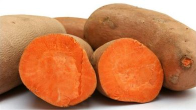 Photo of Одгледување на сладок компир (батат)