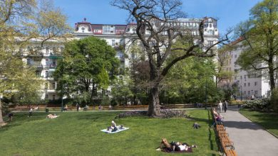 Photo of Виена  е градот кој има најмногу зелени површини во светот