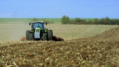 Photo of Германските земјоделци бараат државна помош поради климатските промени