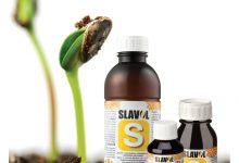 Photo of Правилен третман на почвата со минерални ѓубрива и користење на сертифицирани семиња соодветни на поднебјето, советуваат агрономите