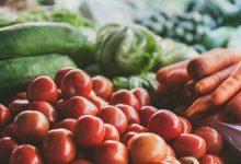 Photo of Бабовски: Владата одобри нови пет дена за поднесување на барања за субвенции во земјоделството по Програма 2020
