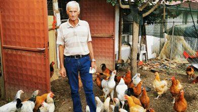 Photo of Богоја Клекачкоски-Боце: На земјоделието му недостига гарантирано производство со однапред одредена цена