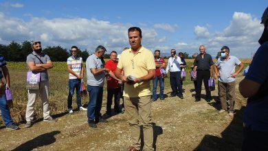 """Photo of """"Семенарство промет"""" во с. Новаци презентираше хибридни сорти пченка"""