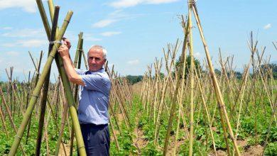Photo of Тетовскиот грав го снемува заради климатските промени и недостиг од работна сила